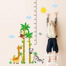 Oerwoud groeimeter